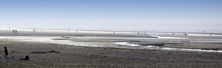 panorama grande marée