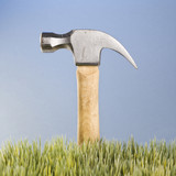 hammer with wooden handle placed behind grass. poster