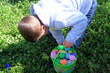 easter egg hunt / boy