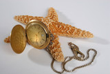 pocket watch and star fish poster