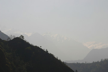 nepal mist