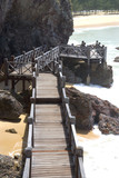 walkway at terengganu coastal beach poster