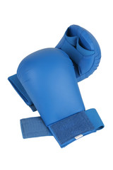 blue karate gloves