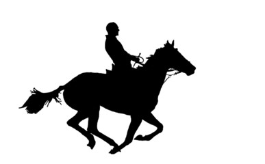 silhouette of the horseman on the horse.