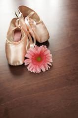 zapatos de ballet y flor