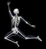 skeleton in motion - woman leaping 2 poster