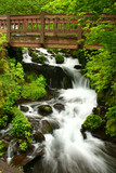 Fototapety bridge over wahkeena falls