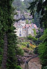 cragside, house,