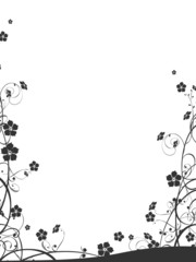 black flora border