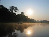 amazon rainforest poster