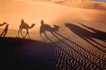 shadow of karavan