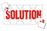 solution puzzle poster