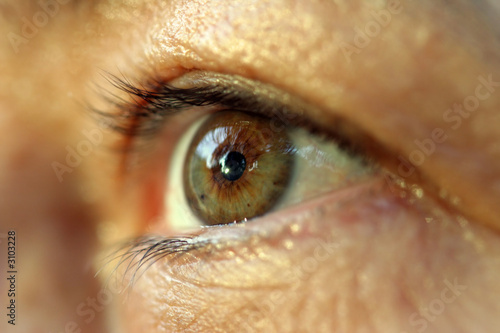 human eye. macro shooting...