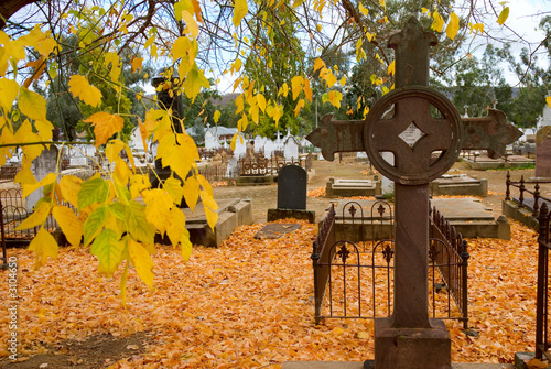 historic cemetery in autumn