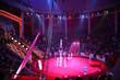 Leinwanddruck Bild - circus performance