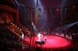 circus arena 4