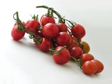 clusters of smallred tomatoes poster
