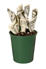 making your money grow