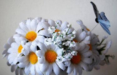 artificial marguerites