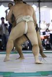 zápasníci sumo 5