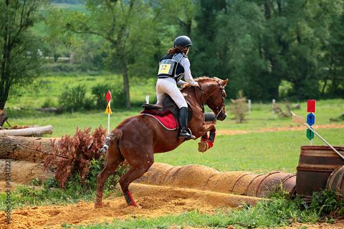 Poster compétition equestre