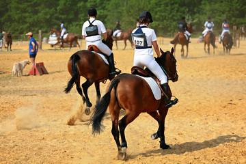 entrainement equitation