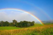 "Постер, картина, фотообои ""ranch rainbow"""