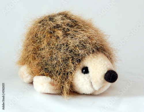 toy hedgehog