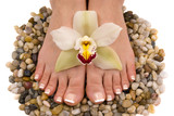 feet and orchid poster