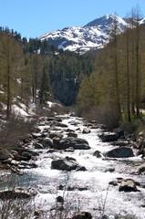 the donau river