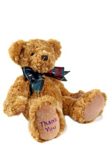 thank you teddy 1