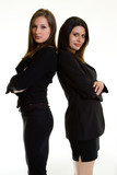 two business women poster