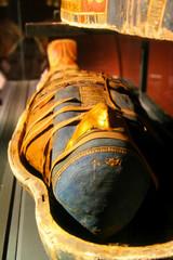 resting mummy