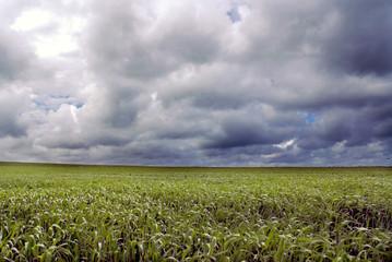 ciel couvert