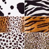 animal skin fabric textures poster