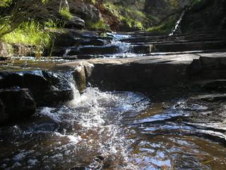 Alligator Gorge, Flinders Ranges of South Australia