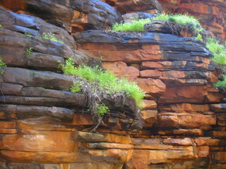 Alligator Gorge, Flinders Ranges of South Australia