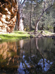 Alligator Gorge, Flinders Ranges