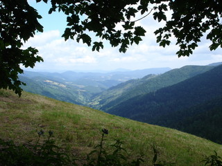 vallée vosgienne