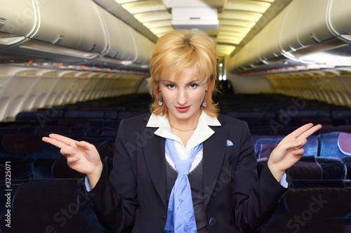 air hostess gesturing - 3225071
