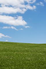 Himmel mit Wolken und  unten eine Wiese im Sommer