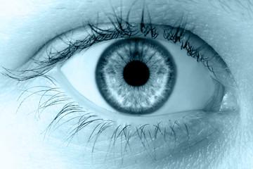 human macro blue eye