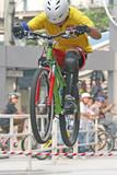 mountain bike trick poster