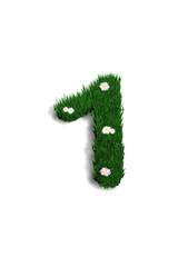chiffre 1 pelouse fleurie