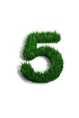 chiffre 5 pelouse