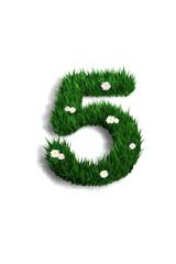chiffre 5 pelouse fleurie