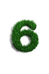 chiffre 6 pelouse