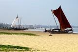 Negombo beach Sri-Lanka poster