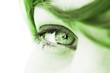 écologie environnement oeil regard de femme vert nature