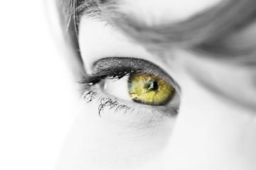 oeil regard de femme jaune or argent euro